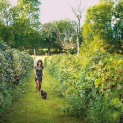 A woman walking through the vineyard of Belgian Horse Winery in Middletown, Indiana