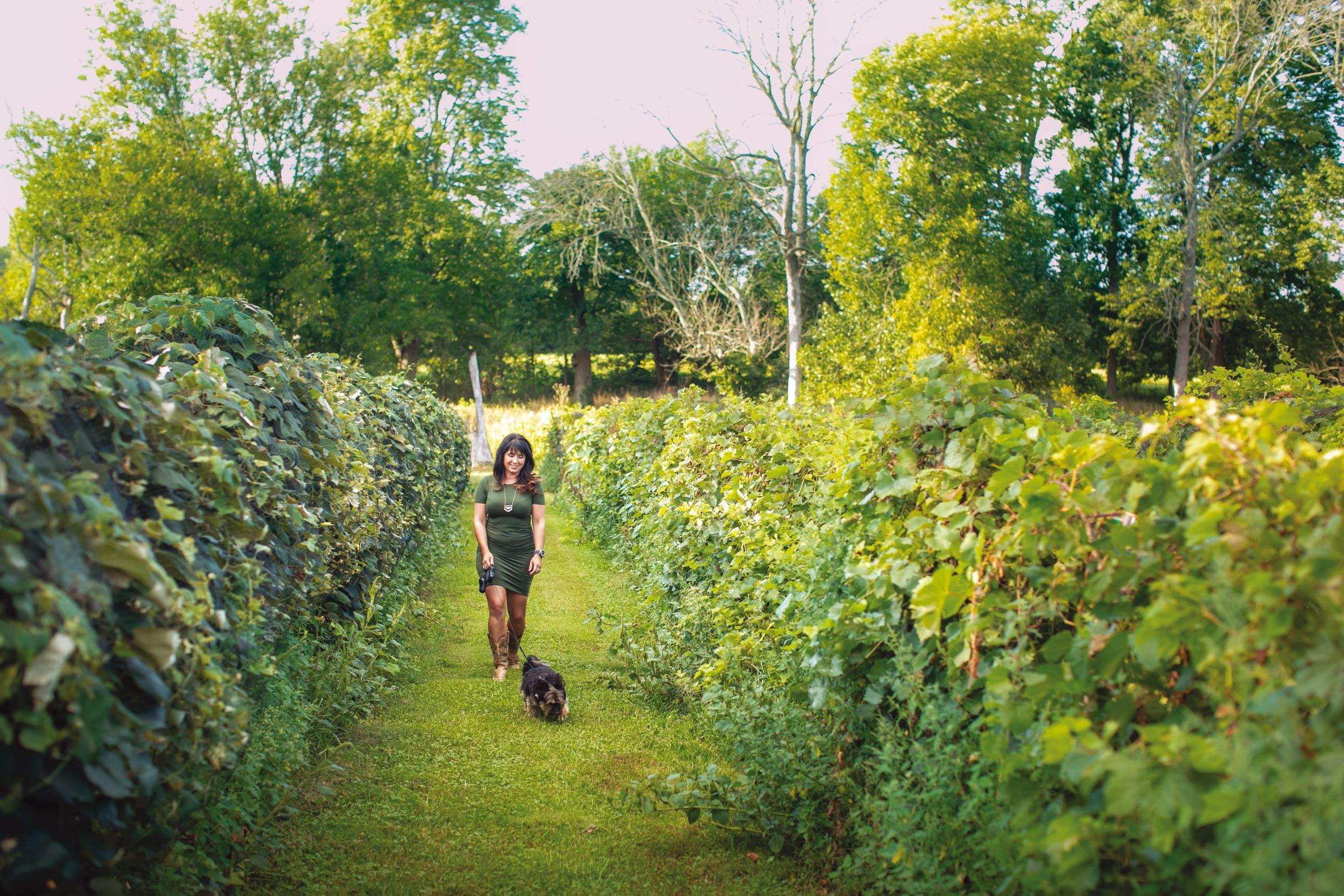 woman walking dog in winery field