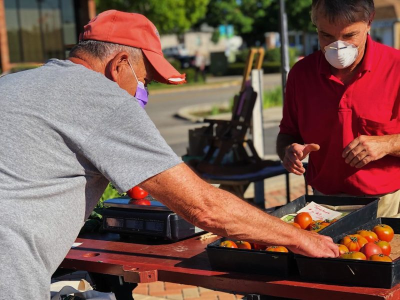 Men wearing face masks pick through fresh tomatoes at Richmond Farmers Market in East Central Indiana
