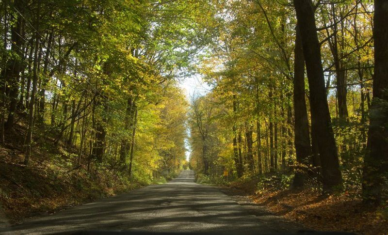 fall creek woods indiana