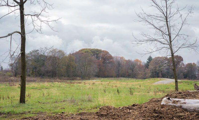 dutro ernst woods nature area